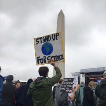 Washington, DC (Courtesy of Sharon Manne PhD)