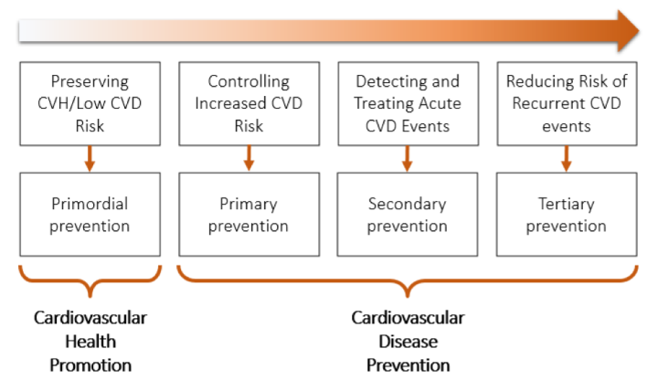 Figure 1. Continuum of cardiovascular health promotion and disease prevention.